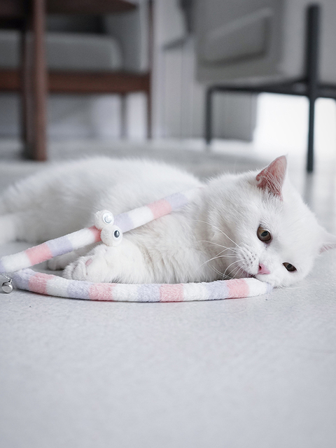 Teaser Stick for Cats. Interactive toy 4