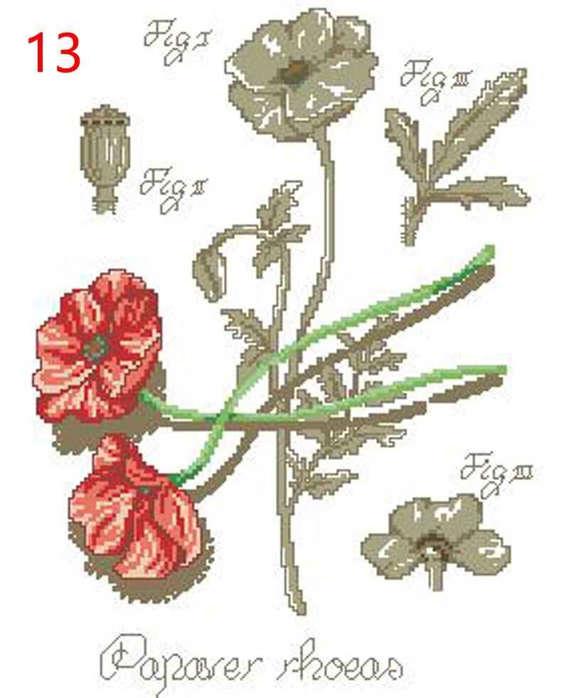 13 DFEA-阴影花系列35罂粟(2)