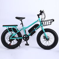 Fat tire electric bike adult electric bicycle aluminum alloy e bike new e bicycle outdoor ebike
