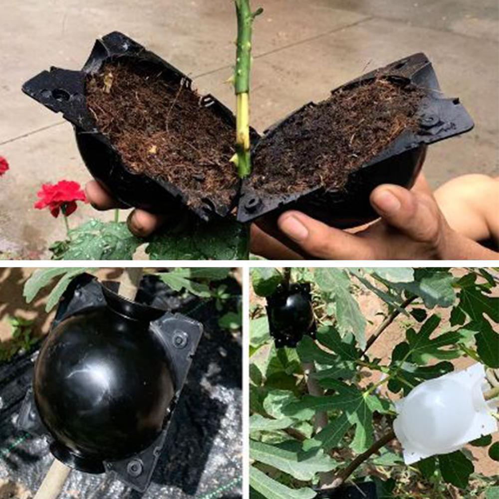 5 шт., чехол для выращивания корней растений, корней для сада 5/8 см в диаметре.|Детские лотки и крышки|   | АлиЭкспресс