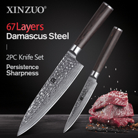XINZUO 2 PCS Kitchen Knife Set 67 Layers Japanese VG10 Damascus Stainless Steel High Quality Chef Utility Knives Pakkawod Handle