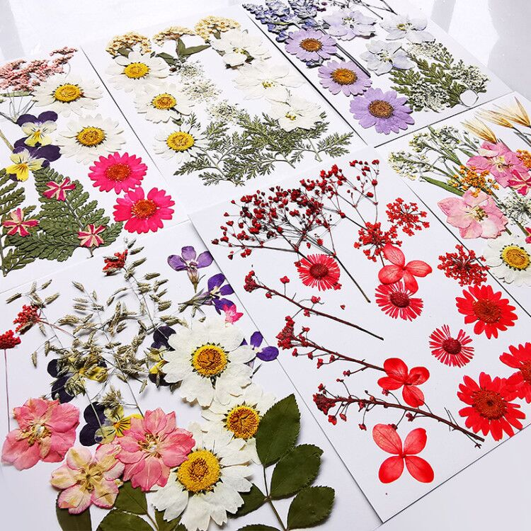 Mixed Natural Dry Flowers Multiple Real Flowers Leaves Petals Assorted for Candle Resin Scrapbooking Pendant Crafts Jewelry DIY kuou 90 Pcs Real Dried Pressed Flowers