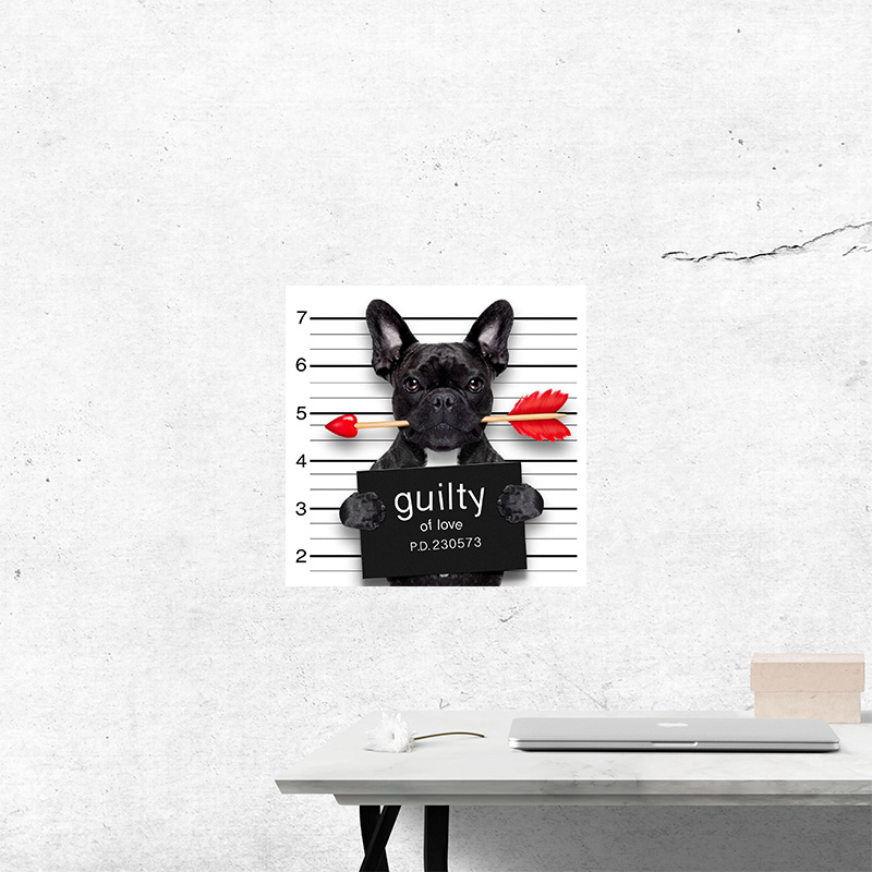 Three Ratels FTC-882 Cute Guilty of Love French Bull Boston Terrier Dog Wall Sticker Decal  Guitar Laptop  kitchen decoration