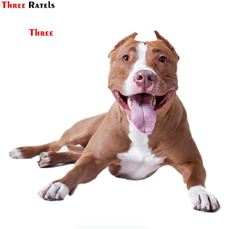Three Ratels FTC-780# 13X15.2CM American Pit Bull Terrrier Dog Breed Car Window Wall  Laptop Covers DIY Vinyl Decal Sticker