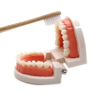We teach children how to brush their teeth 3