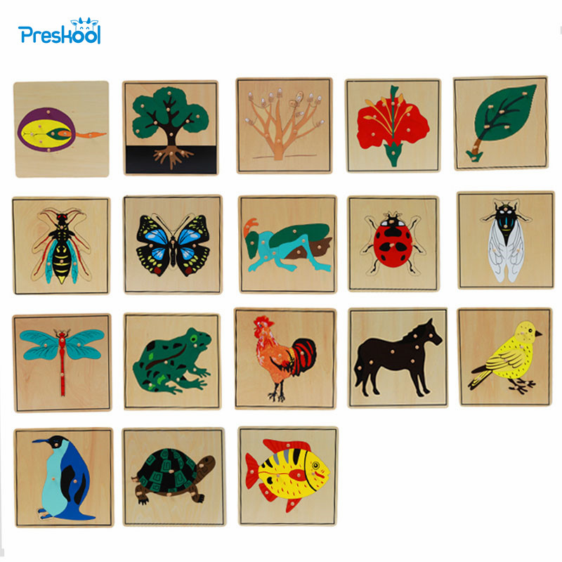 Montessori Science And Culture Instructions Animals, Plants, Insects Wood Mosaic Kindergarten Intelligence Toys For Children