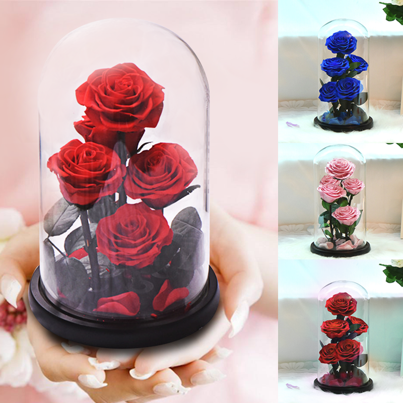 New Arrival Eternal Preserved Rose with Glass Dome 5 Flower Heads Rose Forever Love Wedding Favor Party Gifts for WomenArtificial & Dried Flowers   -