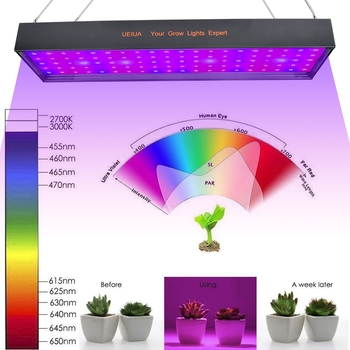 4800W LED Grow Light Panel AC Concatenated Light With 100 5054 LED Blub Flower Growing Full Spectrum Plant Growing