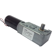 42GZ495 DC Gear Motor 12V 3RPM Electric Bicycle Worm with Biaxial for BBQ Replacement Robot Parts 1&2 Axis