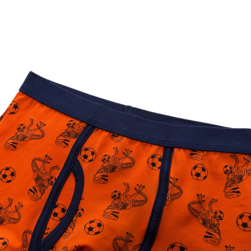 5pcs/set Kids Boys Underwear Cartoon Children's Shorts Panties for Baby Boy Boxers Stripes Teenager Underpants 1-12T