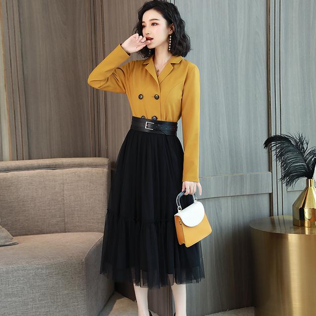 Stylish, long sleeve, mesh long skirt dress