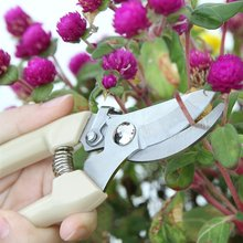 цена на Portable Garden Scissors Grafting Tool Fruit Tree Pruning Shears Bonsai Pruners Garden Shears Gardening Secateurs