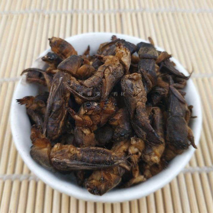Wild Dried Mole Cricket 250g/500g Per Pack