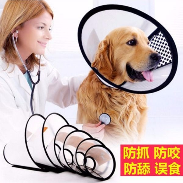 Elizabeth Ring Dog Neck Ring Collar Head Band Pet Supplies Cat Protection Anti-Lick Anti Grasping Circle Anti-Bite Head Cover