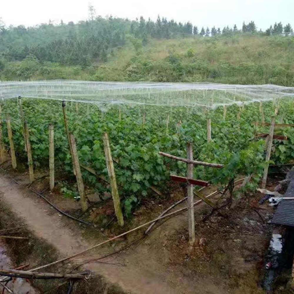 1,8*7,6 M Vogel Netting Garten Net Wiederverwendbare Anti Vogel Mesh Netting Schützen Pflanzen Obst Dropshipping