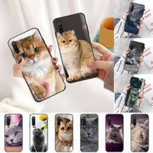 Webbedepp gato británico de pelo corto funda de teléfono para Xiaomi Redmi note 4 4X T 8 9 10 K20 K30 cc9 9t pro lite.