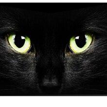 65 дюймов 4K светодиодный экран дисплея монитор Многоязычная интеллектуальная беспроводная(Wi-Fi) ТВ ОС Android светодиодный IP ТВ t2 ТВ
