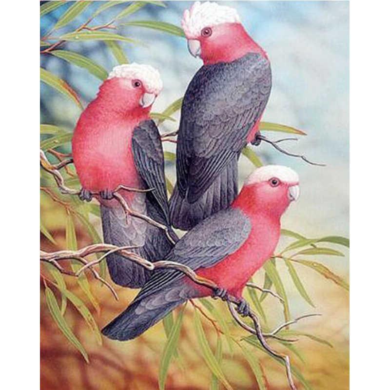 Persegi/Bulat Bor DIY 5D Lukisan Berlian Burung Beo Burung 3D Bordir Cross Stitch Rhineston Mosaik Home Decoratio Hadiah m471