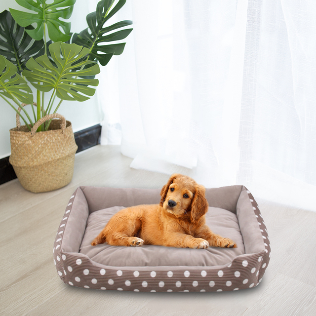 Plush Bed with Removable Pad  6