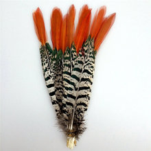 Натуральные перья фазана для рукоделия 5 30 см/2 12 дюймов