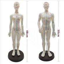 Model akupunktury żeńskiej/męskiej 50cm z chińskimi punktami i podstawą Model akupunktury ludzkiego ciała z PVC Model punkt akupunktury