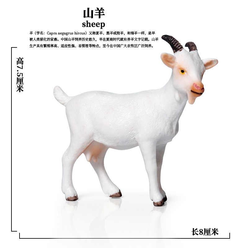 クロスボーダー子供の教育シミュレーション野生動物モデルのおもちゃセット羊白ヤギ静的ソリッド装飾装飾品