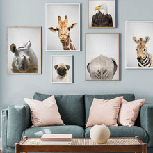 Giraffe Eagle Rhinoceros Dog Zebra Wall Art Canvas Painting Animal Nordic Posters And Prints Pictures For Kids Room Decor