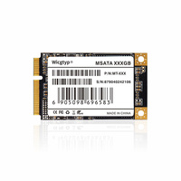 Wicgtyp mSATA SSD SATA3 III 6 기가바이트/초 SATA II 16GB 32GB 64GB 128GB 256GB 512GB 1 테라바이트 HD SSD 솔리드 스테이트 드라이브 디스크 모든 신호 PC