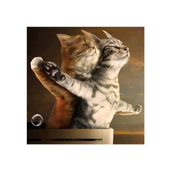 5D majsterkowanie malowanie diamentowa ścieg krzyżykowy śliczny kotek diamentowy haft diamentowy obraz mozaika robótki KBL tanie i dobre opinie 30*30cm 40*40cm 50*50cm cute kitten diamond painting 6 lat Malarstwo na płótnie as shown 1 pc diamond painting