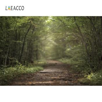 laeacco natural backdrops for photography palms tree beach sand summer holiday blue sky scenic photo background photo studio Laeacco Green Summer Forest Tree Leaves Park Way Natural Scenic Photo Background Photography Backdrop For Photo Studio