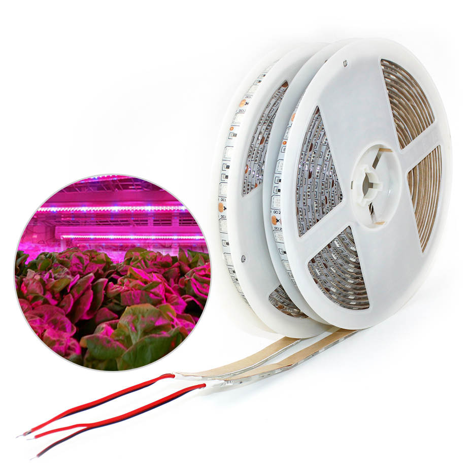 Indoor Plant Grow Light LED Strip Full Spectrum 5m Waterproof LED Light Strip SMD 5050 DC12V Cuttable 1mm Width Flower Grow Lamp