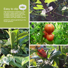 50 шт многоразовые 2,5 см пластиковые опорные зажимы для растений Сваг из лозы садовые теплицы овощи помидоры зажимы
