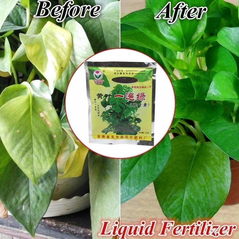 1pc 25g Rapid Rooting Powder Plant Growth Regulator Bonsai Tree Cutting Foliar Fungicide For Seedling Hormones Fertilize Ro A1g2 Plant Food Aliexpress