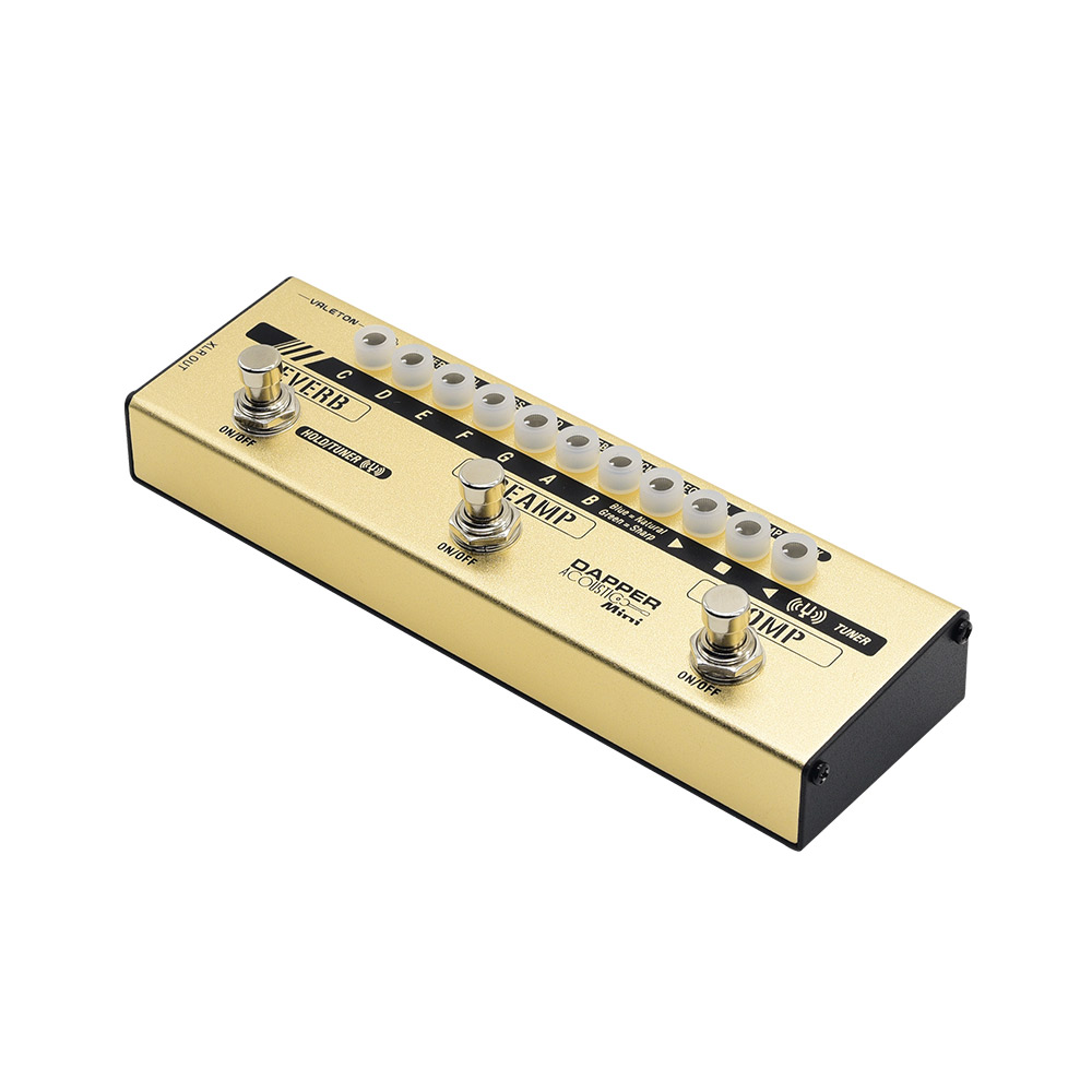 MES-4(Dapper-Acoustic-Mini)-6