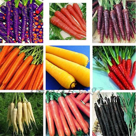 300pcs / Bag Carrot Bonsai Garden Non GMO Healthy Fruit & Vegetable Planting Potted Plants For Home Garden