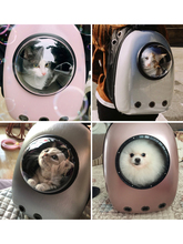 Cat Cages Transparent Space Capsule Shoulder Bag  Pet Outdoor Travel Backpack Dog Windproof Fashion