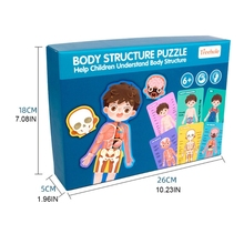 P15C Human Body Structure Puzzle Toy Human Bones/Muscle Puzzle Brain Developmental Jigsaw Learning Education Science Kits Toy