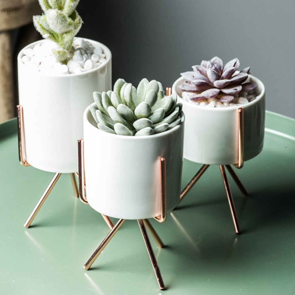 Nordic Style Plant Stand with Flower Pot Succulent Planter Rack Holder including White Planting Pot|Vases| |  - title=