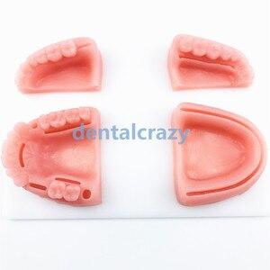 Image 2 - 4 pçs/set Dental Oral/Goma de periodontite silicone módulo de treinamento de sutura sutura modelo