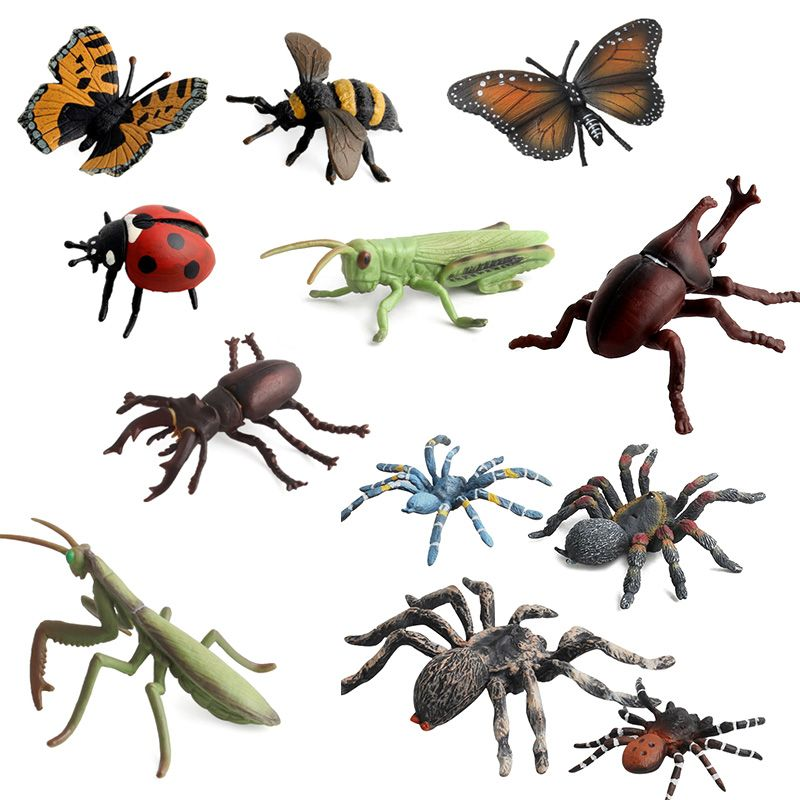 12Pcs/Lot Insect Models Figurines Kid Cognitive Animal Toys Early Education Toys