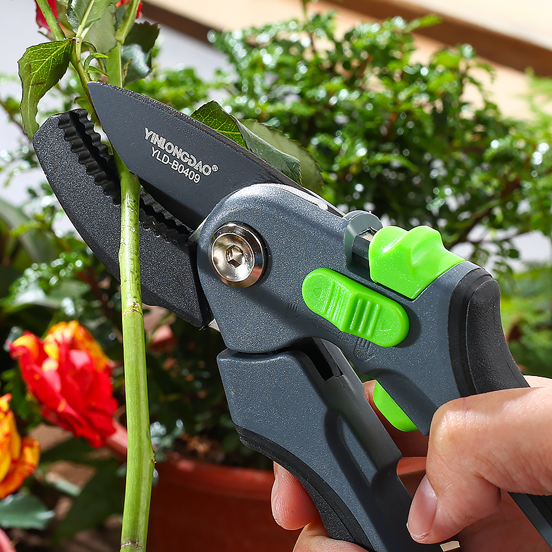 DTBD Time Saving Gardening Scissor as Hand Pruning Shears for Orchard Tree and Fruit Tree 2