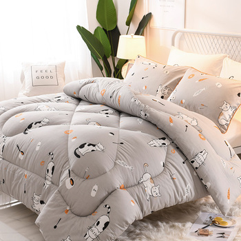 King/queen/twin Sizes Beds Comforters Cute Style Down Sage Blanket For Girl Home Bedding  Luxury Comforters Ultra Soft Duvet