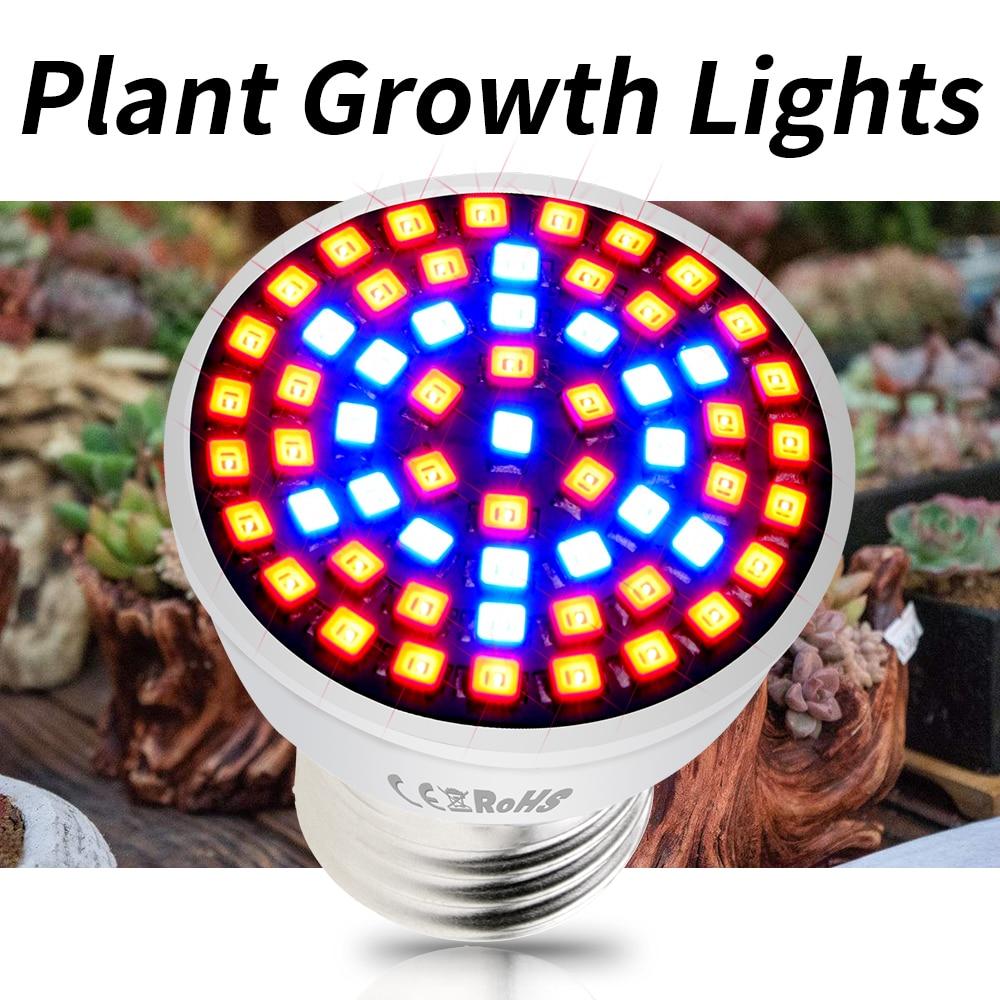 E27 Plant Light Full Spectrum LED Grow Bulb E14 LED Phyto Lamp GU10 Growing LED Hydroponic Tent Light MR16 48 60 80leds 220V B22