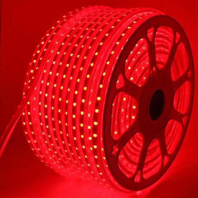 220V 110V LED Strip 5050 50m 100m IP67 Waterproof RGB 16 Colors Rope Lighting With RF Music Sync Bluet Waterproof RGB LED Strips