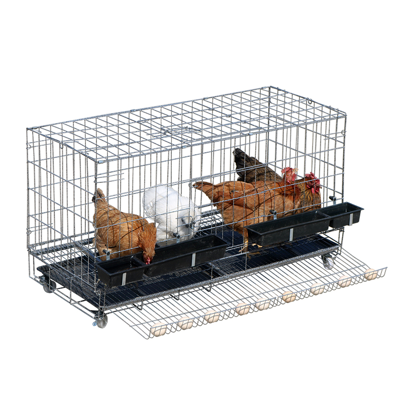 Chicken Cage   Home Egg  Culture  Folding    And Duck Automatic Rolling