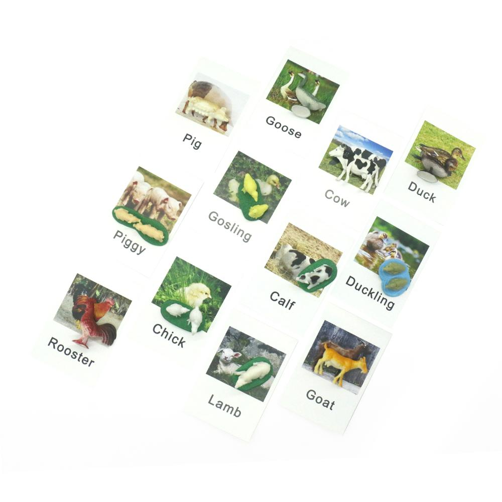 Купить с кэшбэком Montessori Infant Toys Poultry Animals Cards Learning Educational Toys for Toddlers Flash Card Juguetes Brinquedos YJ1244H