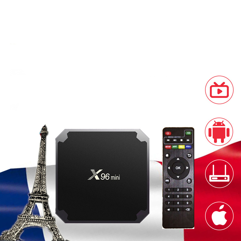 IPTV Box X96 mini TV BOX Android 9.0 2G 16G NEOTV Pro Arabic <font><b>Belgium</b></font> Netherland Smart Set top tv Box NEO TV PRO no app included image