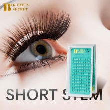 BES 8-15mm Premade Fans Short Stem Russian Volume Lashes Extension Eyelashes Supplier