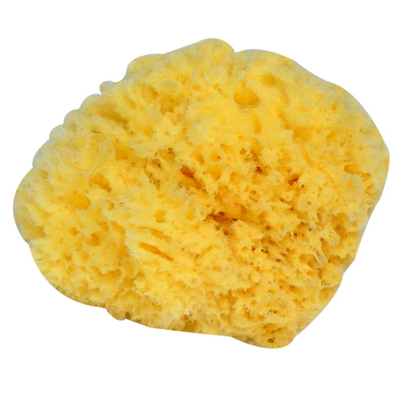 ABSF Natural Yellow Sea Grass Sponge. Perfect for Bath, Shower and Body Care. Softly Rough But Not Skin Irritating.