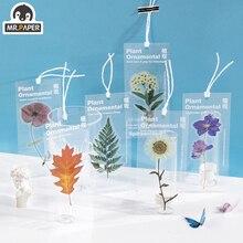 Transparent Bookmarks Flower Plant Decoration-Material Room-Series Observation Mr.paper